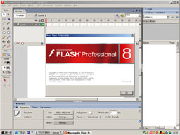 flash8_1.jpg